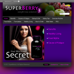 "<a href=""wp-content/uploads/2011/07/wordpressTheme.png""></a> A WordPress theme I designed. <a href=""http://superberry3.com"">View the live site</a>."